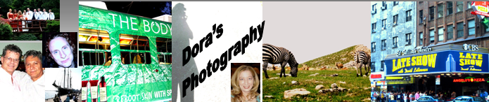 Online dating photographer toronto